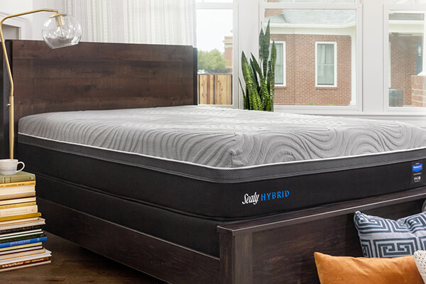 Sealy Mattress in a Decorated Bedroom
